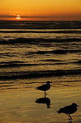 Cannon_Beach_Sunset.jpg
