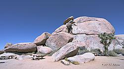 Cap-Rock-in-Joshua-Tree-National-Park-PPW.jpg