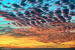 Carmel-Highlands-Sunset_00001_PPW.jpg