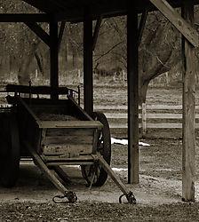 Cart_in_Barn.jpg