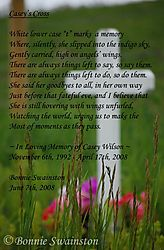Casey_s_Cross_with_poem900mp.jpg