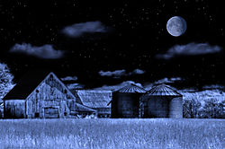 Cavallaro_Odyssey_Blue_Moon_.jpg