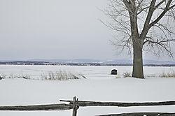 Champlain_Fisher_jpeg_DSC_0029.jpg