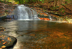 Chapel_Brook_4.jpg