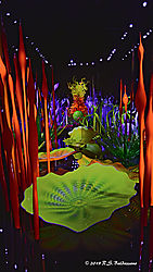 Chihuly-Art-Glass-Seattle-PPW.jpg