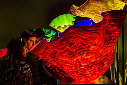 ChihulyMuseum_1_saturated_DHR2343.jpg