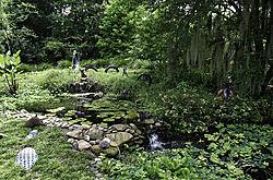 Childrens_Pond_Kanapaha_Gardens.jpg