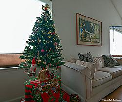 Christmas-Tree-in-LR-2014--2-PPW.jpg