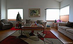 Christmas-Tree-in-LR-2014-PPW.jpg