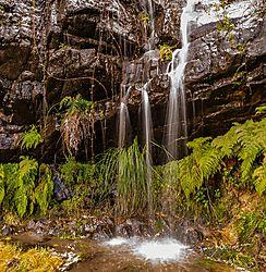 Clematis_Falls_Grampians-0029.jpg