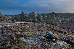 Cold_landscape.jpg