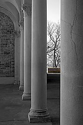 Columns_bench_and_tree.jpg