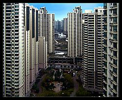 Concrete-Canyon-b.jpg