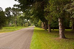 Country_Road_in_Michigan-8426.jpg