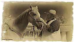 Cowboy-Steadies-His-Horse-B_W-Antique.jpg