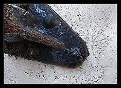 Croc-a.jpg