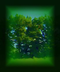 D8E0162_3_4_Photographic_A_901.JPG