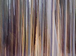 DC_Abstract_Tree_3.jpg