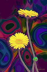 DSC0185-Sunflower-2x3-prtg-eff-2-Mail.jpg