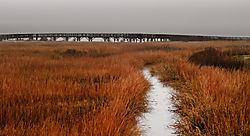 DSC_31971_late_fall_Milford_shoreline.jpg