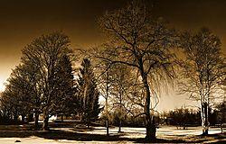 DSC_4837-infra1-color-harsh-web.jpg