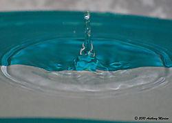Dancing_Water_Droplets_4.jpg