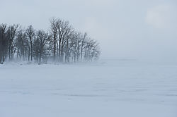 David_Ralph_Blowing_Snow_North_Point.jpg