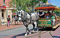 Disney-Horse-Drawn-Trollly.jpg