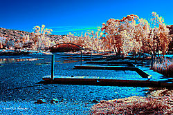 Dry-Docks-at-Vasona-Park-IR.jpg