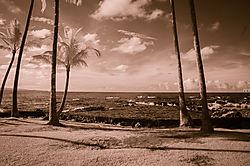 EARTH_SEA_and_SKY.jpg