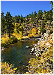 E_CARSON_RIVER_FISHING-HOLE_10-25-19.jpg
