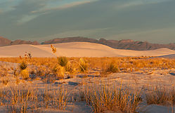 Early_Morning_White_Sands_New_Mexico.jpg
