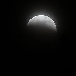 Eclipse-0835.jpg