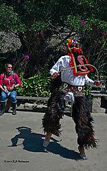Ecuadorian-Native-Dancer-PPW.jpg