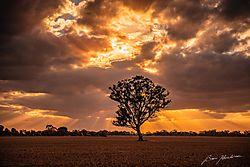 Elmore_Sunset-0047.jpg