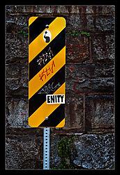 Enity-d.jpg