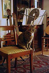 FSL-Mimi-Staring-2-N2470-11-08.jpg