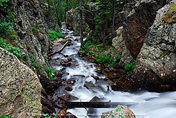 Fall_River_Road_No1.jpg