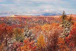 Fall_in_NH.jpg