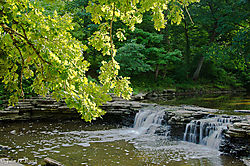 Falls_at_Waterfall_Glen-0568.jpg