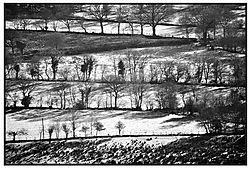 Field_patterns_Wales.jpg