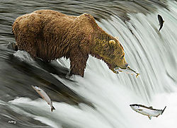 Fishing_Grizzly.jpg