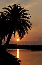Florida_sunrise3.jpg