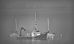Fog_Lifting_BW_D853792-HDR-2_copy.jpg