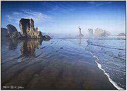 Foggy-Morning-DSC_2110.jpg