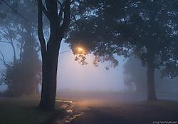 Foggystreet1.jpg