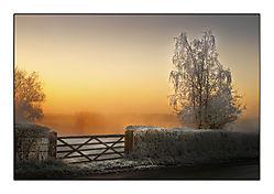 Frosty_Gate_1.jpg