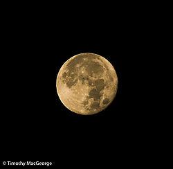 Full_Moon11.jpg