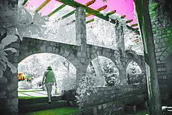 GARDEN_ISTANBUL_1892.jpg
