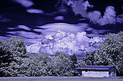 GREENSBORO_CLOUDS_and_SHED.jpg